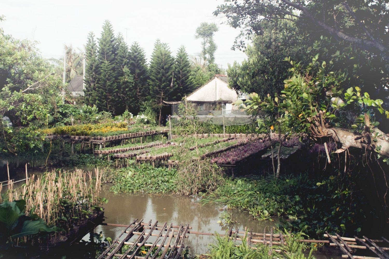 garden_mekong_thevoyageur09