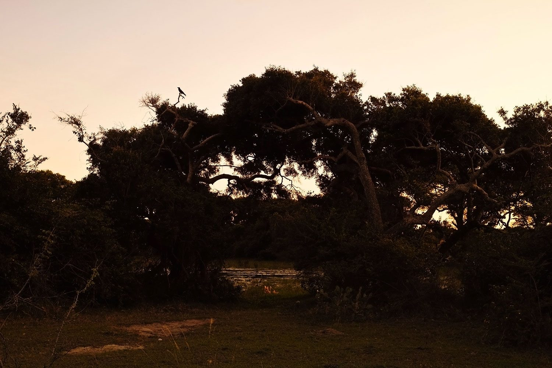 sunset_srilanka_thevoyageur03