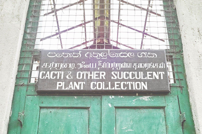 kandy_botanicalgarden_srilanka_thevoyageur_02