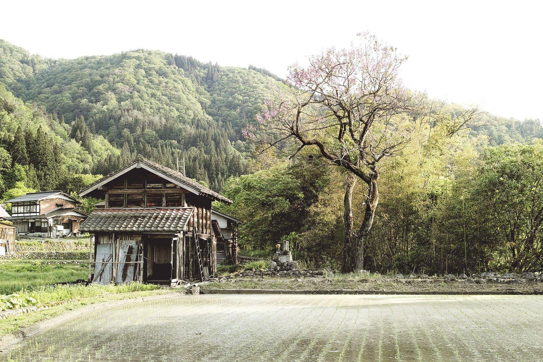 shirakawago_japan_thevoyageur_11