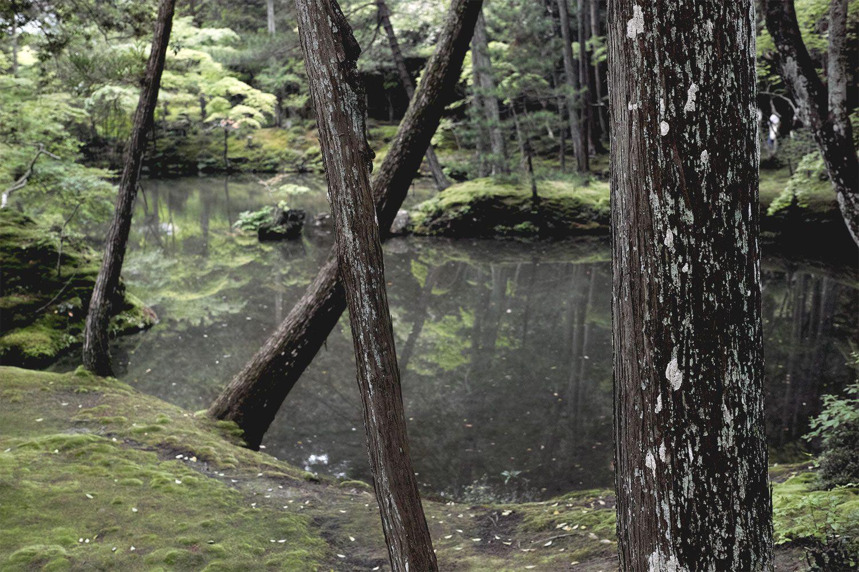 moss_temple_kokadera_japan_thevoyageur11