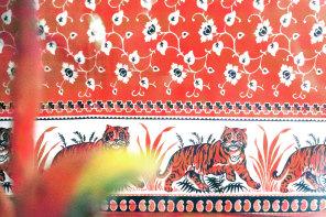 Graphic Tour : Sri Lanka