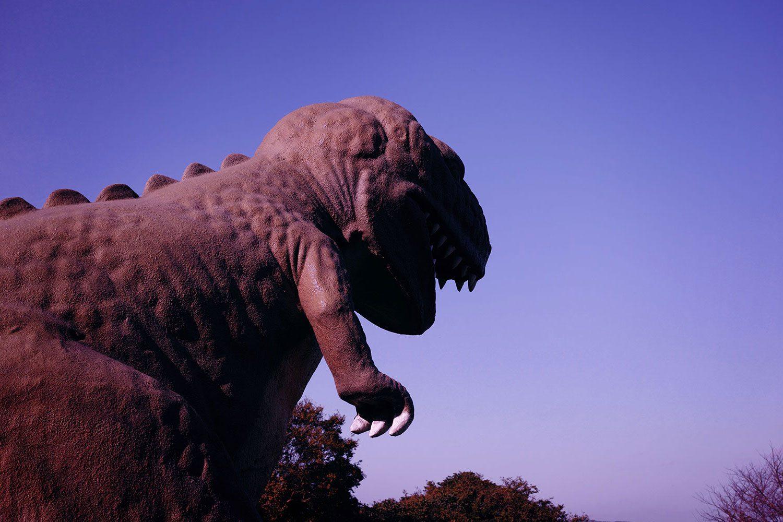 dinosaurpark_sakurajima_japan_thevoyageur007