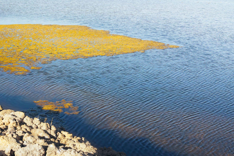 salt_ponds_castro_marim_portugal__thevoyageur003