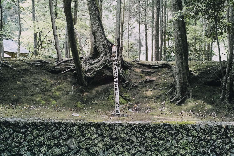 jizoin_bamboo_temple_kyoto_japan_thevoyageur002