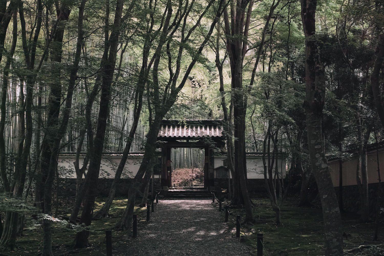 jizoin_bamboo_temple_kyoto_japan_thevoyageur003