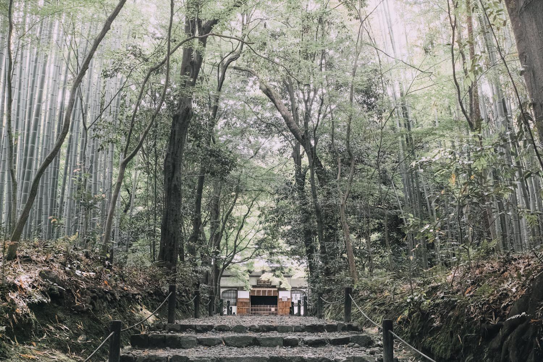 jizoin_bamboo_temple_kyoto_japan_thevoyageur004