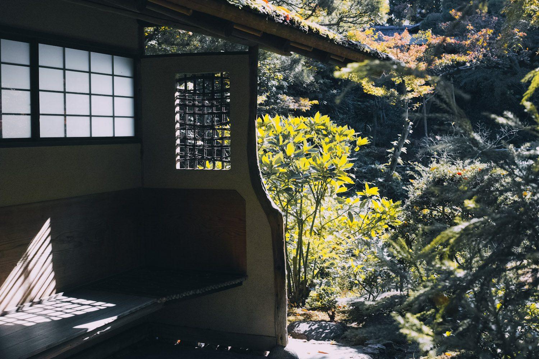 nezumuseum_tokyo_japan_thevoyageur013