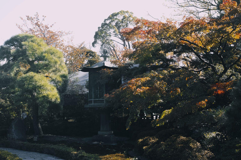 nezumuseum_tokyo_japan_thevoyageur014