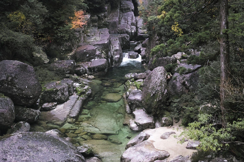 yakusugiland_yakushima_japan_thevoyageur13
