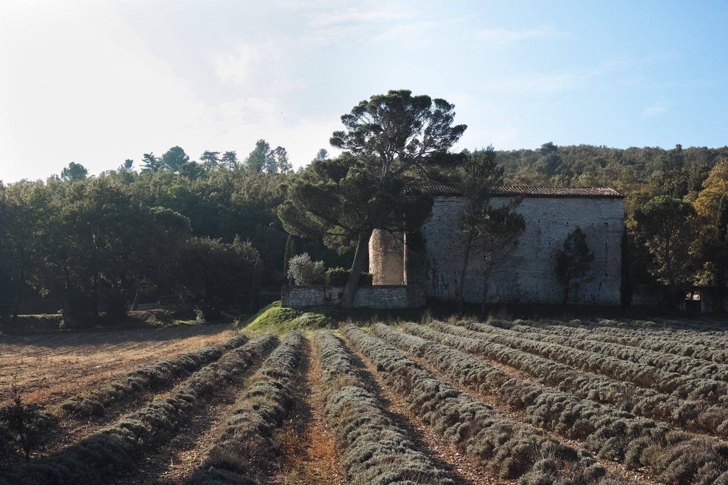 themood_drome_october_france_thevoyageur012