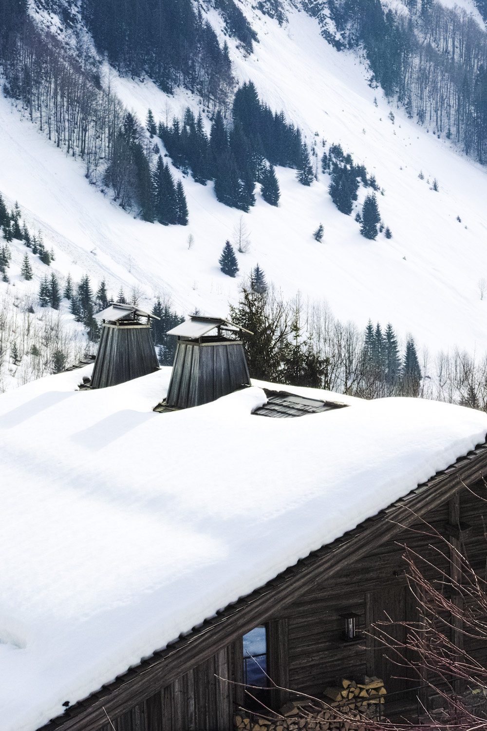 paradisesearch_chalet1864_legrandbornand_france_thevoyageur006