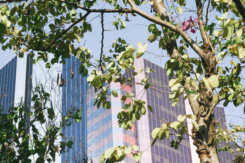 themood_kowloon_hongkong_china_thevoyageur025