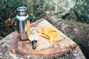 The scene : a picnic in the forest, Yakushima island, Japan