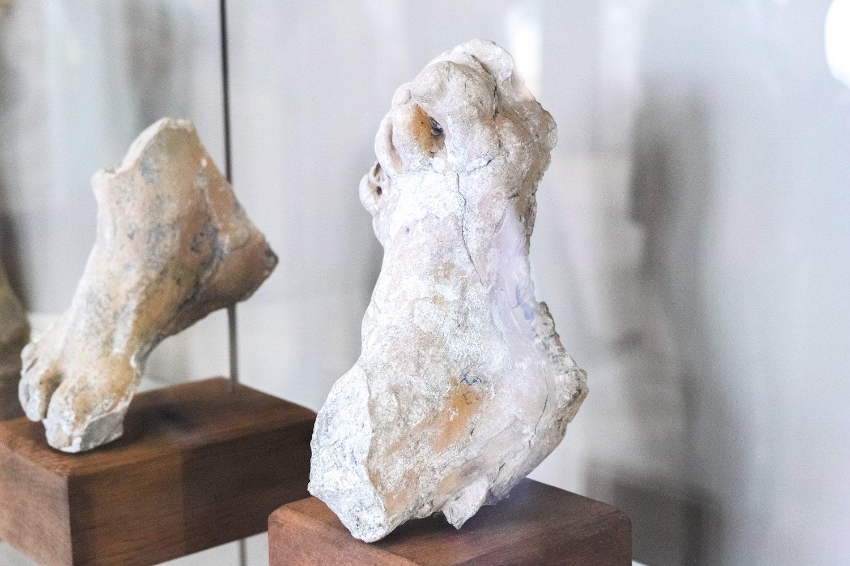 muséerodin_paris_france_thevoyageur007