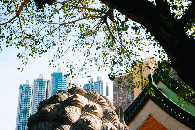 Sik Sik Yuen Wong Tai Sin Temple_hongkong_china_thevoyageur01 (20)