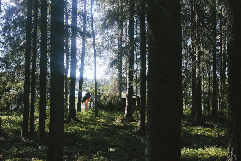 greendelight_finland_thevoyageur16