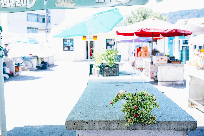 Sighisoara_market_romania_thevoyageur (19 sur 19)