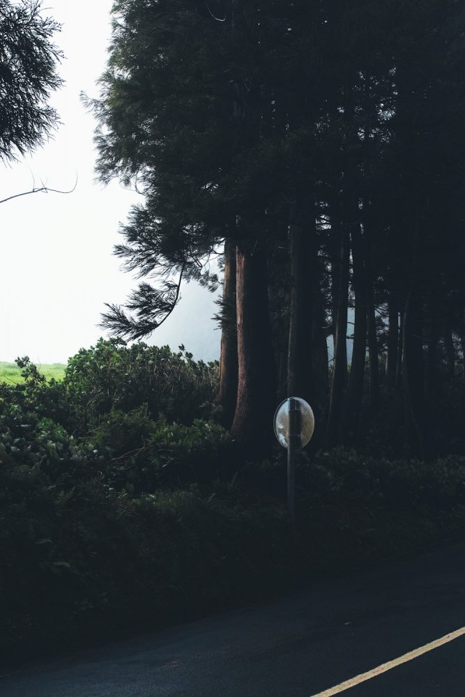 panorama_landscapes_azores_thevoyageur-20