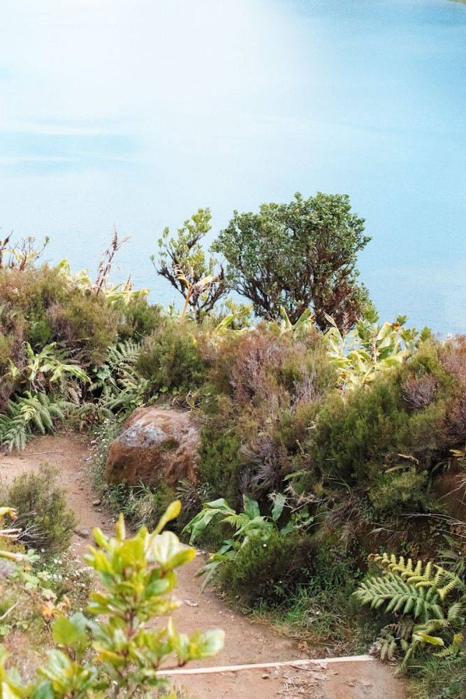 panorama_landscapes_azores_thevoyageur-26