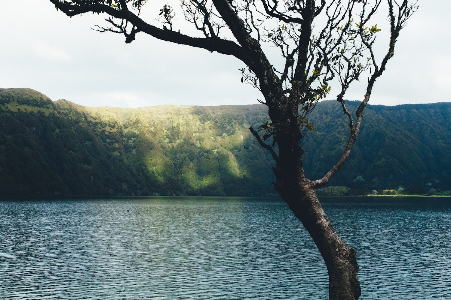 panorama_landscapes_azores_thevoyageur-42
