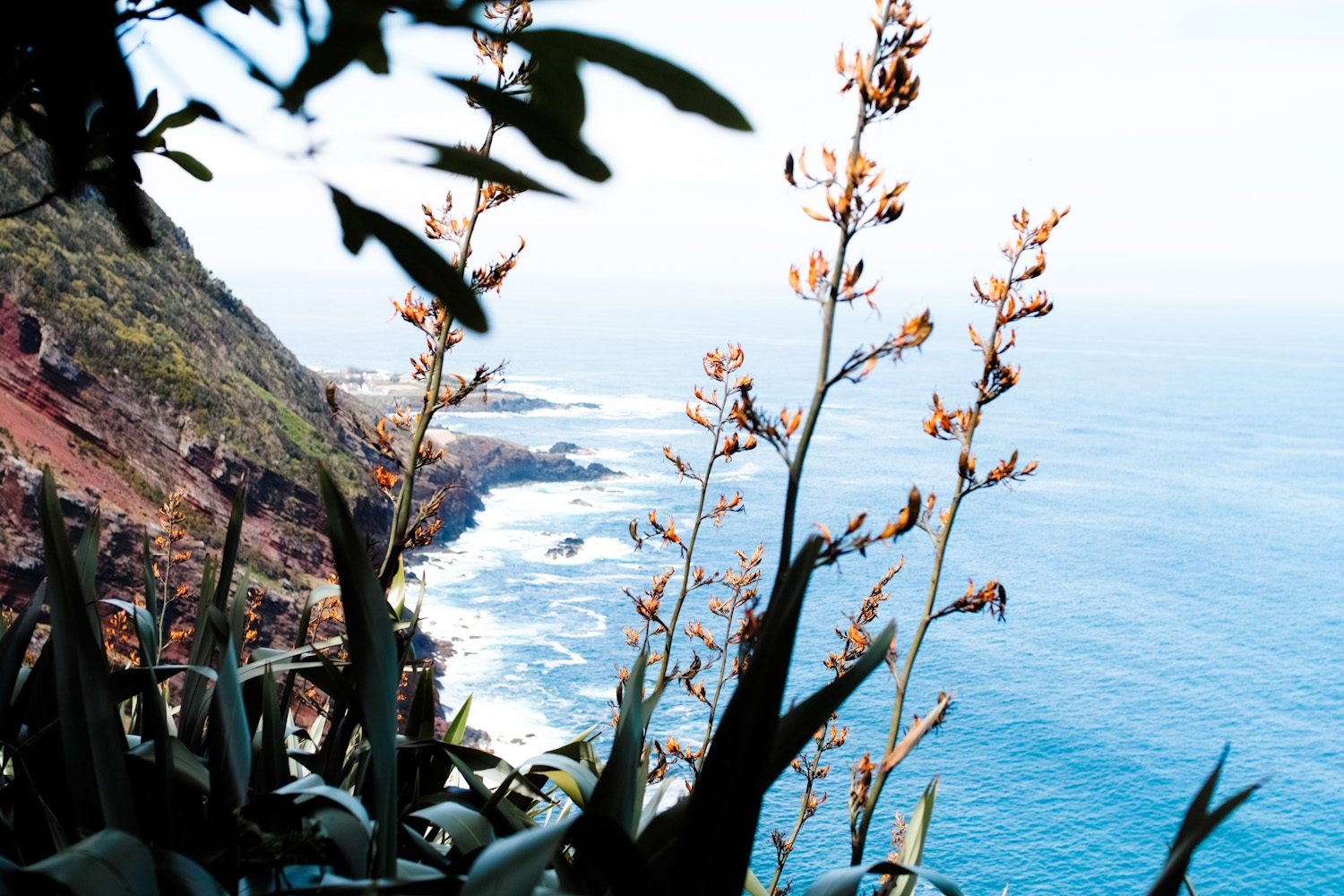 panorama_landscapes_azores_thevoyageur-46