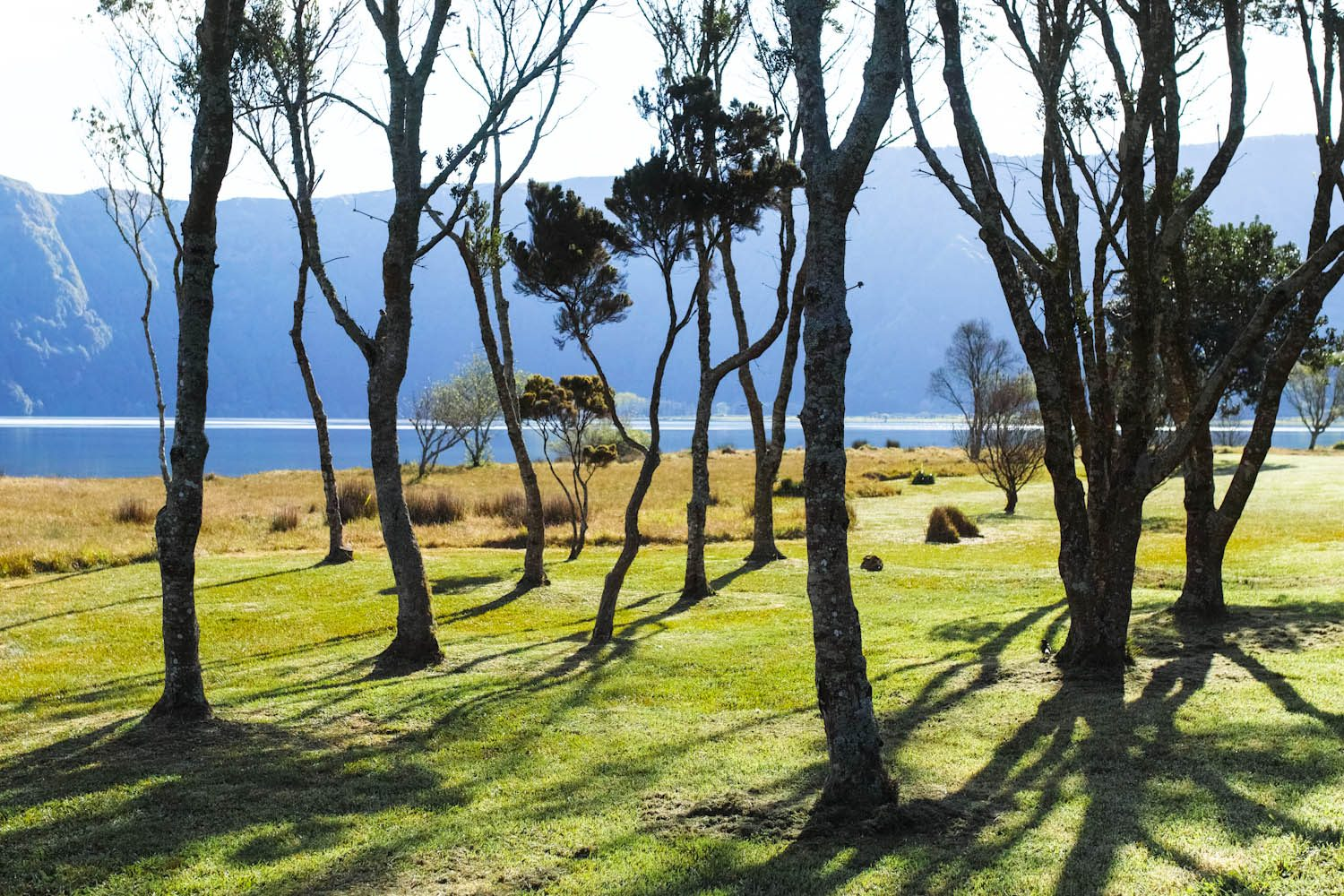 panorama_landscapes_azores_thevoyageur-53