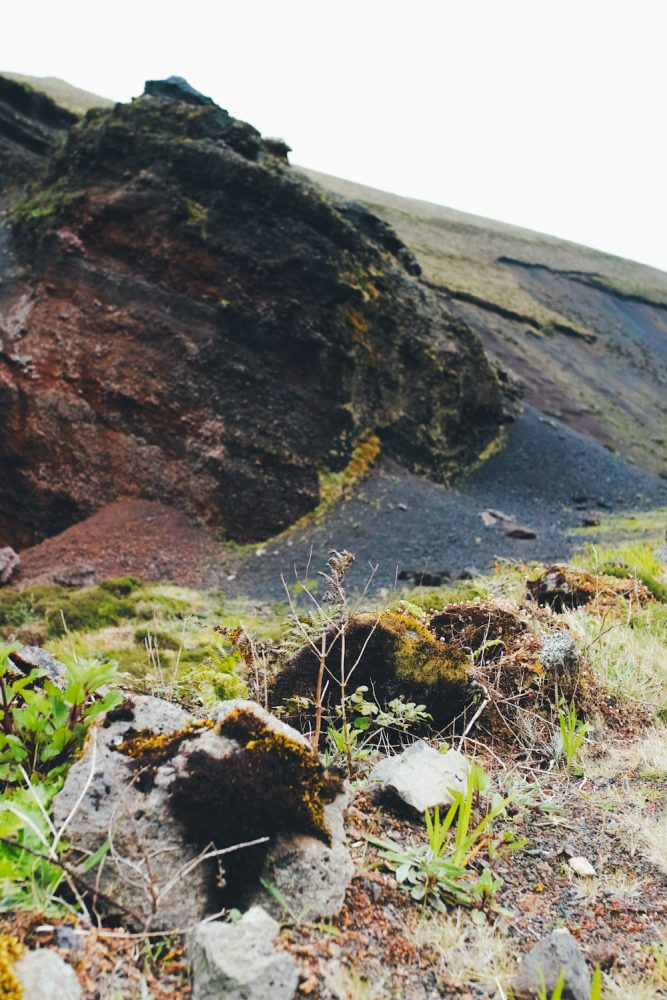 panorama_landscapes_azores_thevoyageur-55