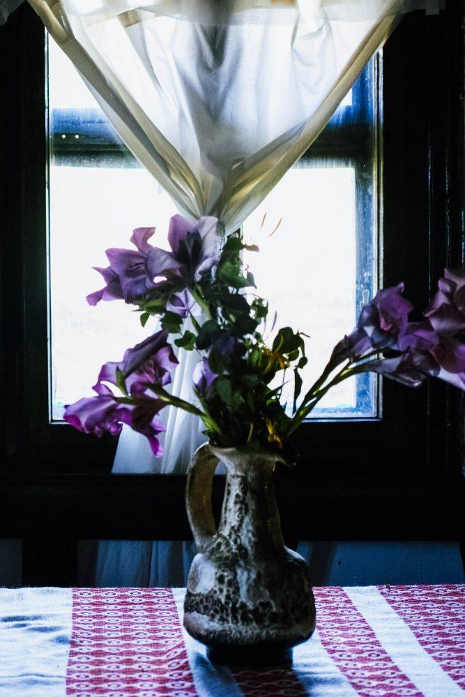flowers_romania_thevoyageur004